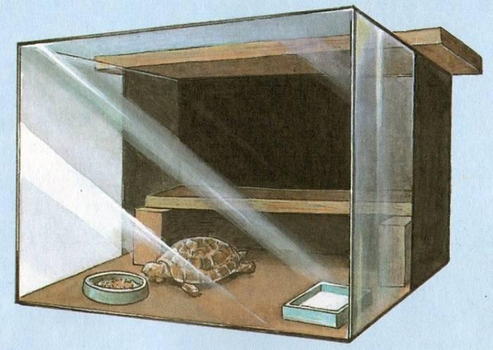 Как продезинфицировать аквариум? 14 фото правила дезинфекции аквариумных растений. как дезинфицировать аквариум после гибели рыбок марганцовкой или перекисью водорода?