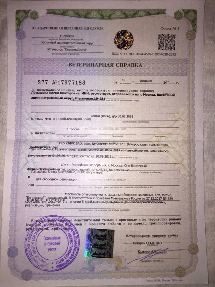 Просмотр списка заявок на получение ветеринарного сертификата для вывоза домашнего животного за границу в системе ecert