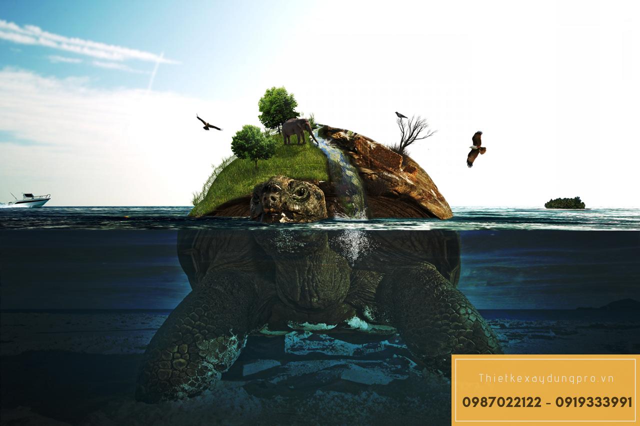 Мифы, ошибки и заблуждения о черепахах. где живут черепахи как называются черепахи
