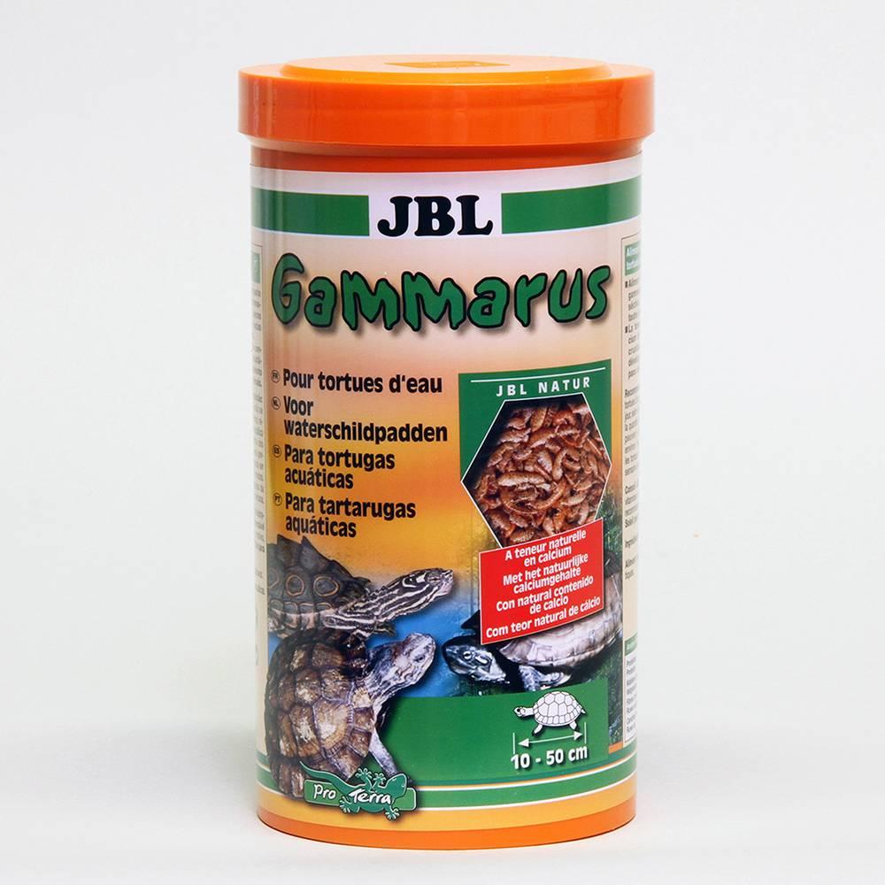 Домашняя аптечка для черепах