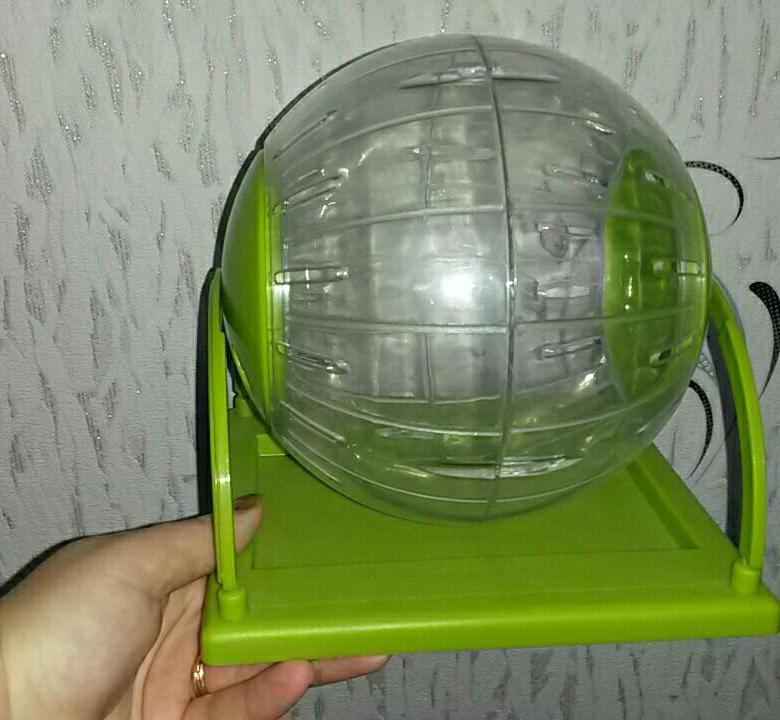 Прогулочный шар для шиншилл