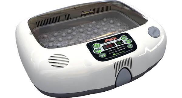 Инкубатор для яиц – как правильно пользоваться в домашних условиях