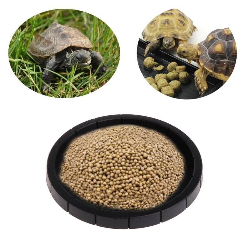 Поилки и кормушки для красноухих и сухопутных черепах