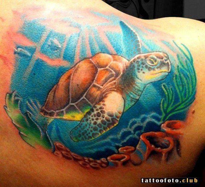 Тату - эскизы черепаха