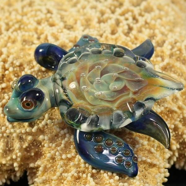 Черепаха - горячие посты