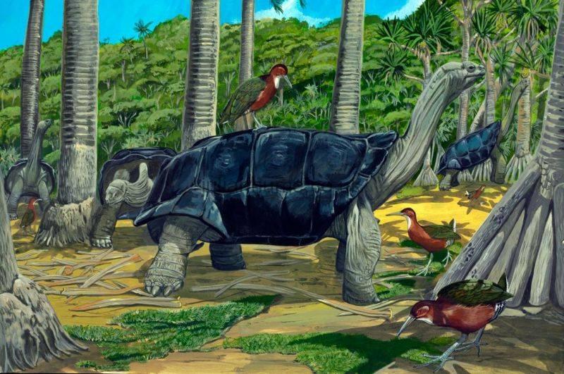 Животные, вымершие после 1500 года