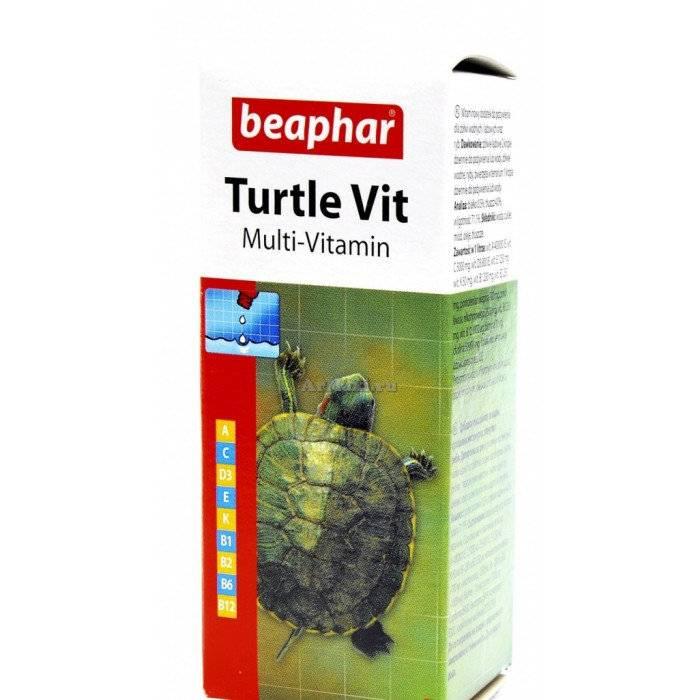 Чем лечить черепах от простуды