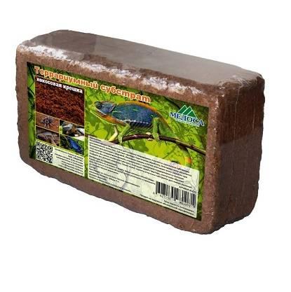 Как подготовить кокосовый субстрат для улитки