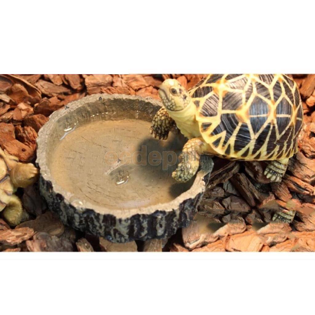 Лампа накаливания для красноухих черепах