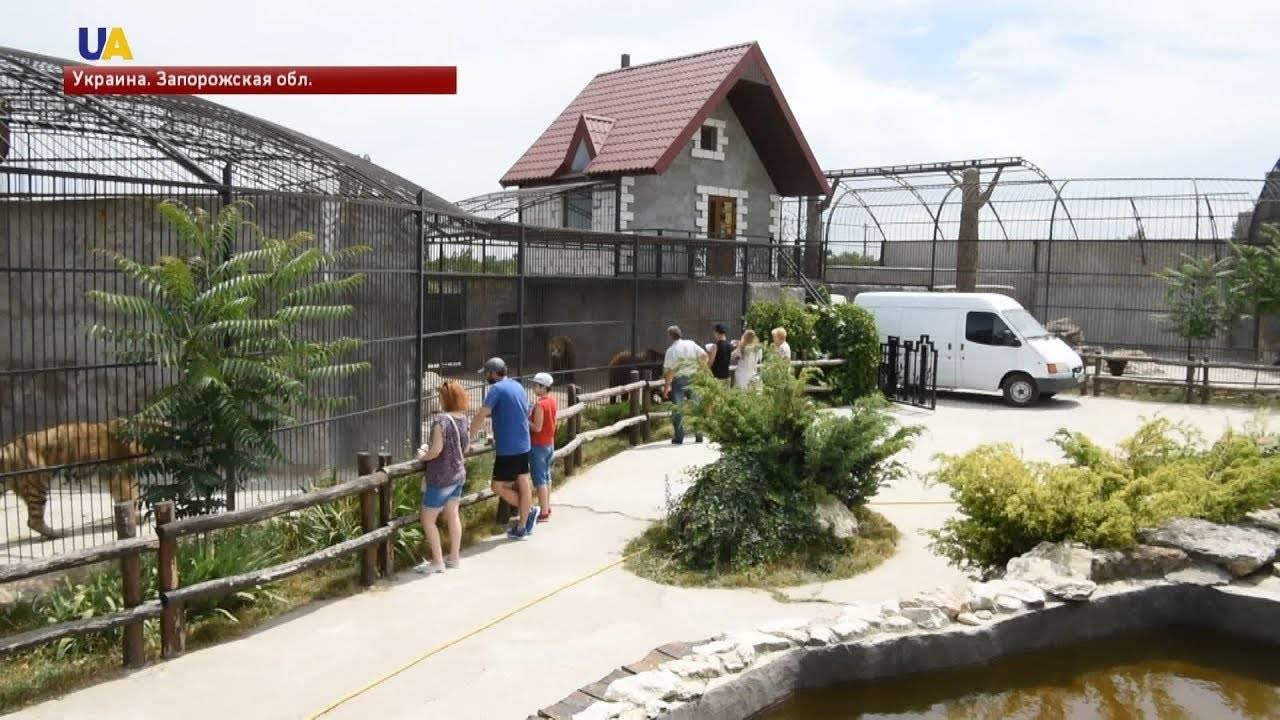 Реабилитации диких животных - wildlife rehabilitation