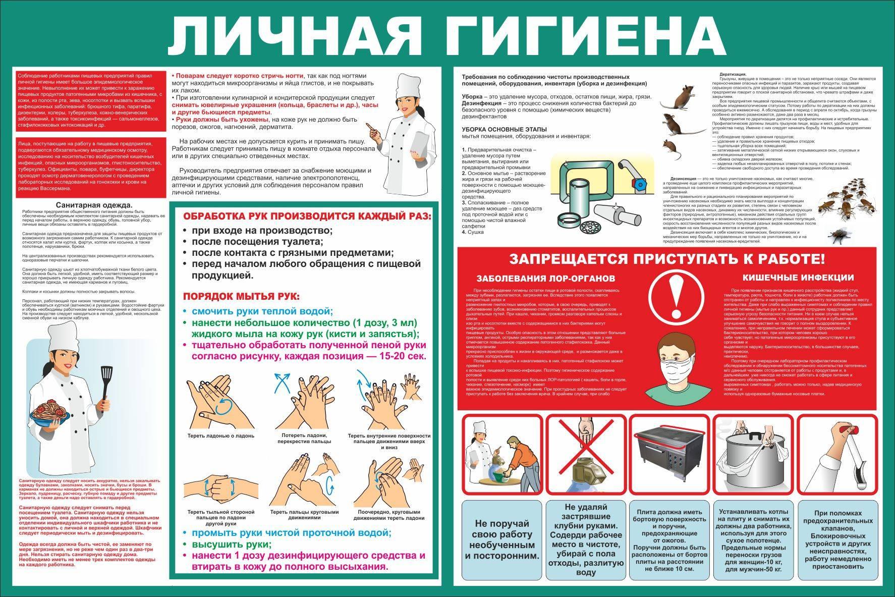 § 4. обеспечение личной безопасности в различных бытовых ситуациях
