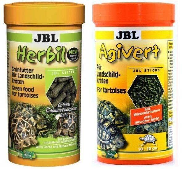Чем кормить в домашних условиях сухопутную черепаху? сухие корма для черепах название корм для черепахи r
