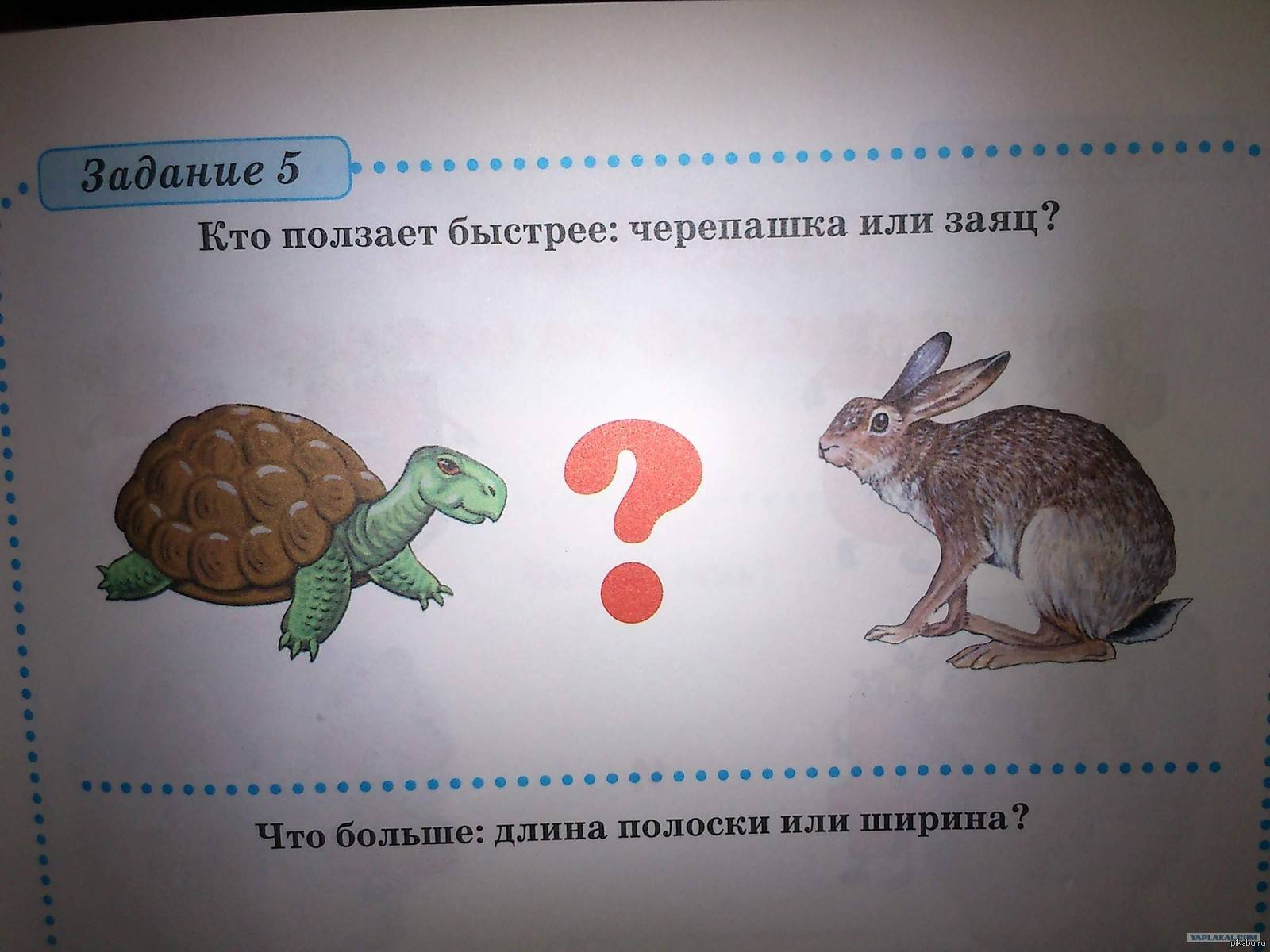 Загадка про ахиллеса и черепаху