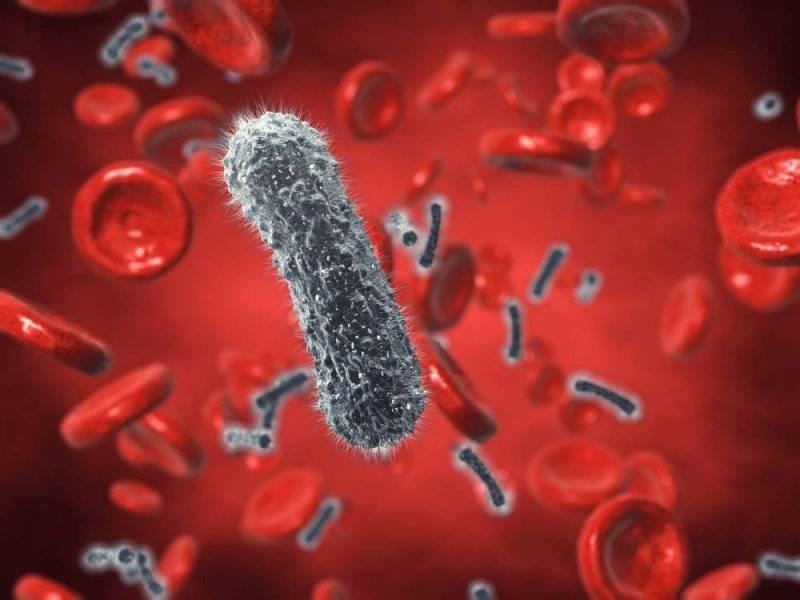 Лечится ли сепсис крови. чем опасен сепсис — последствия заболевания.