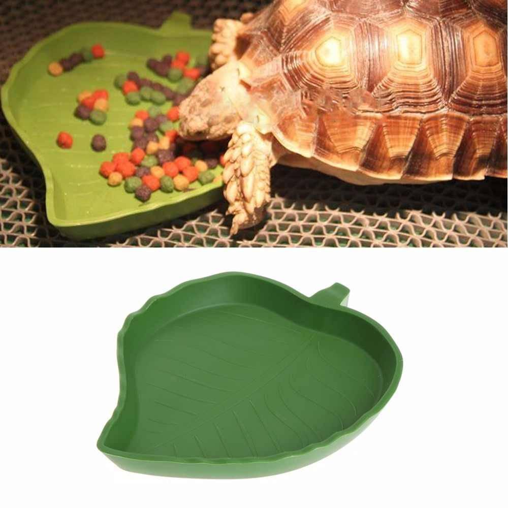 Секреты питания водных и сухопутных черепах