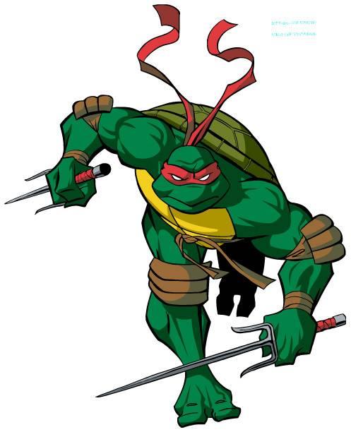 Имя для черепахи мальчика. подчеркнуть индивидуальность и выбрать подходящее имя своей черепахе. имя для черепахи, исходя из особенностей характера