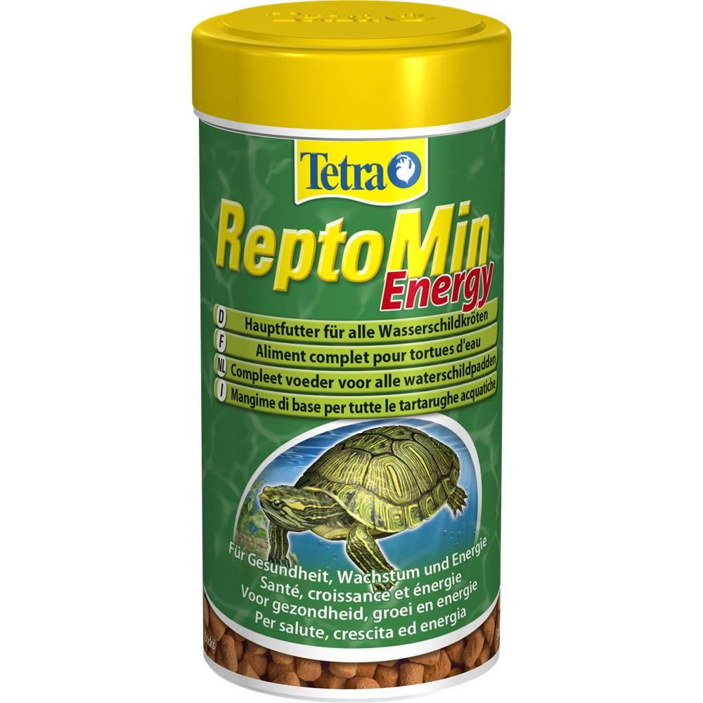 Чем кормить красноухих черепах в домашних условиях - советы и рекомендации.