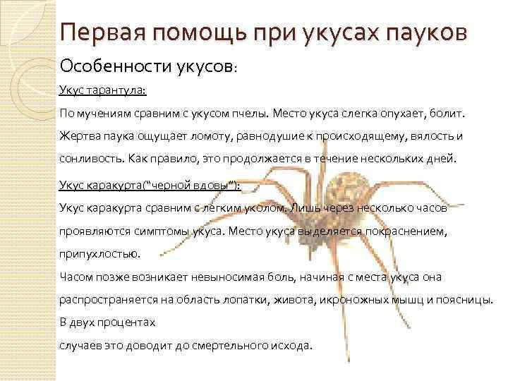 Укус скорпиона