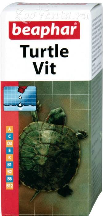 Принудительное кормление черепахи