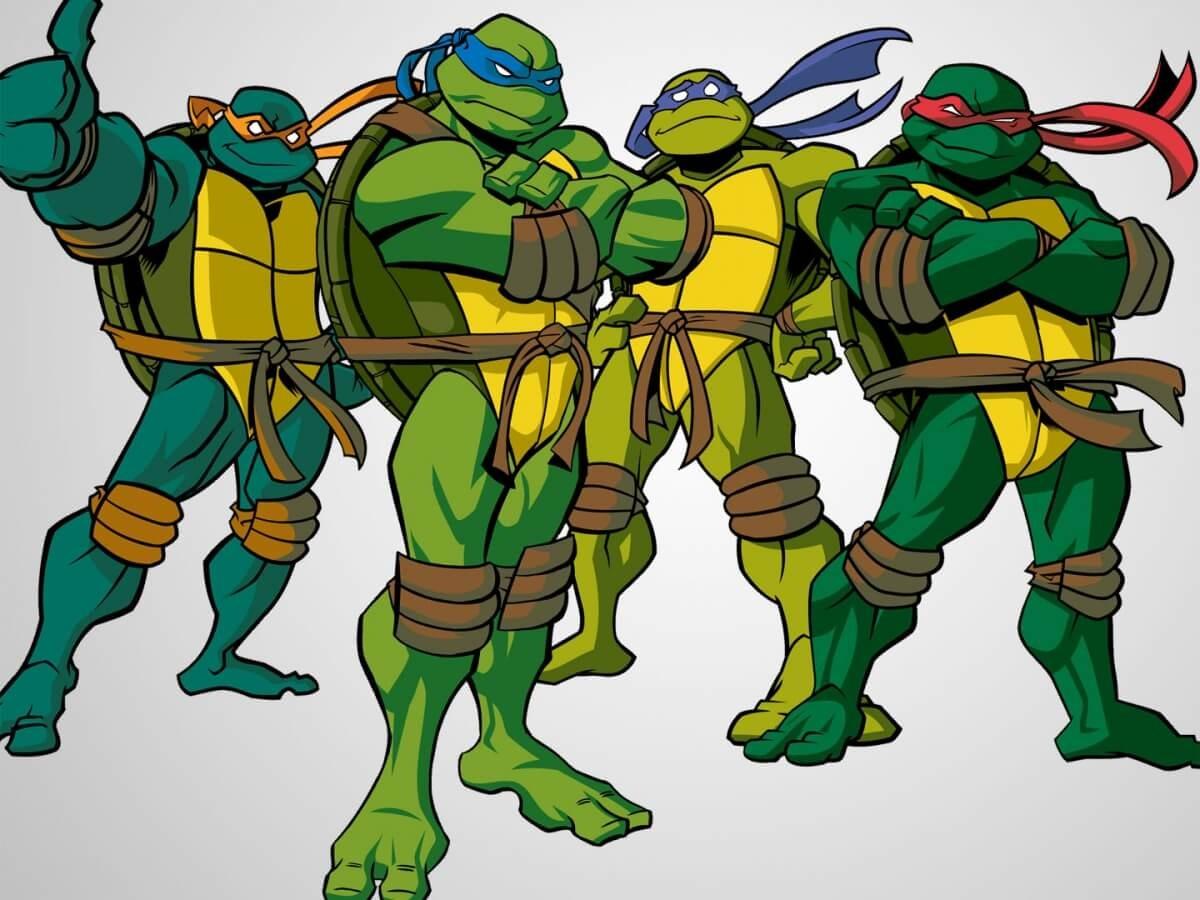 Подчеркнуть индивидуальность и выбрать подходящее имя своей черепахе