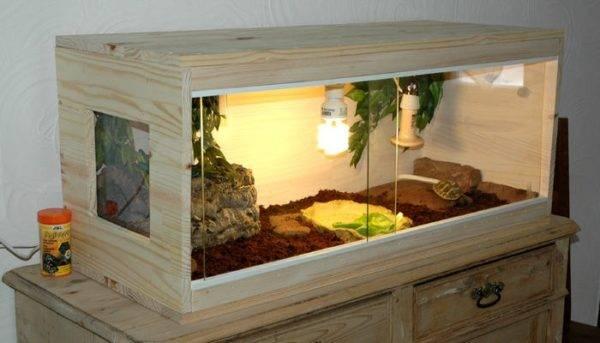 Террариумы для сухопутных черепах в домашнем интерьере
