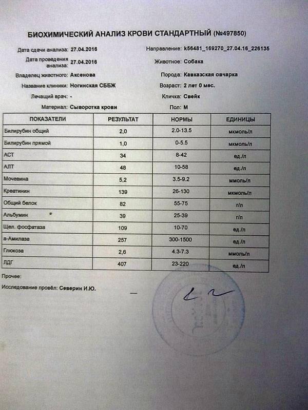 Крови стоимость анализ биохимия крови лямблий по анализу