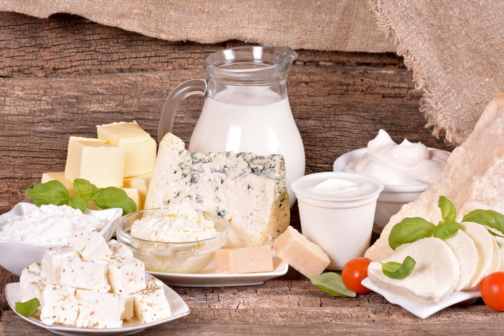Молоко, творог или кефир: можно ли хомякам?