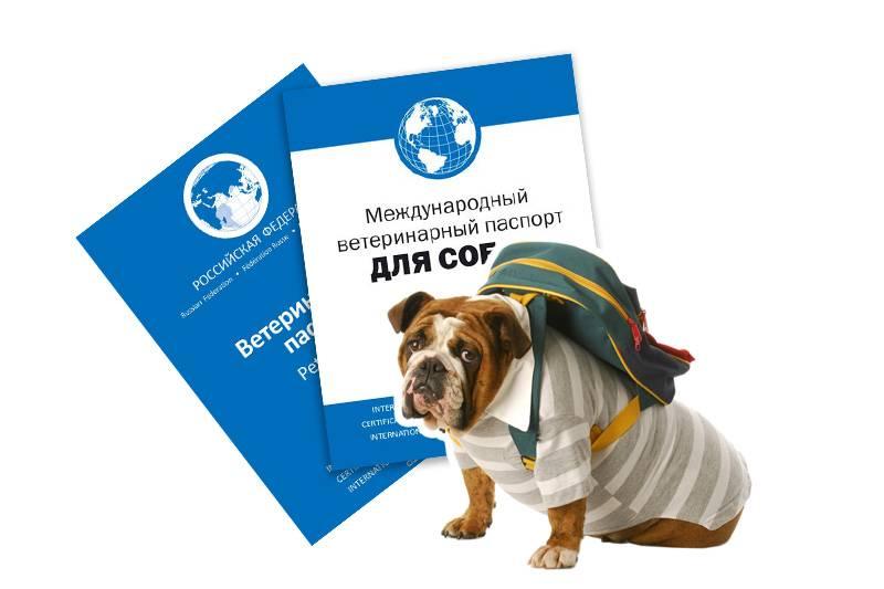 Россельхознадзор - регистрация и лицензирование
