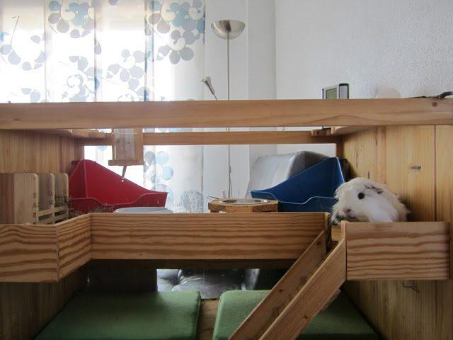 Как сделать домик для морской свинки своими руками