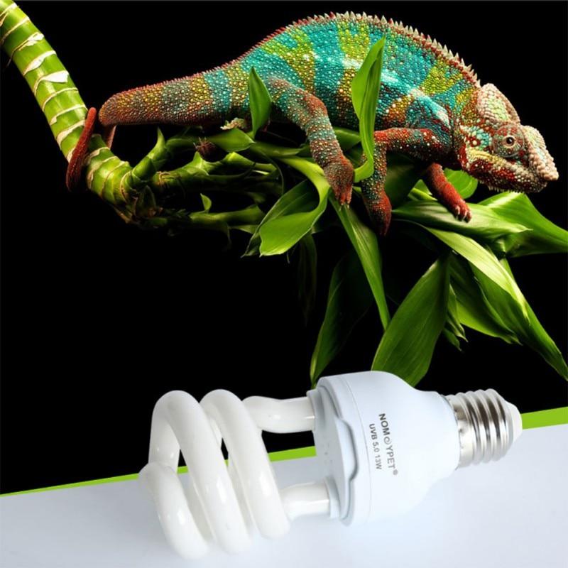 Значение витамина D3 и ультрафиолетового освещения для черепах
