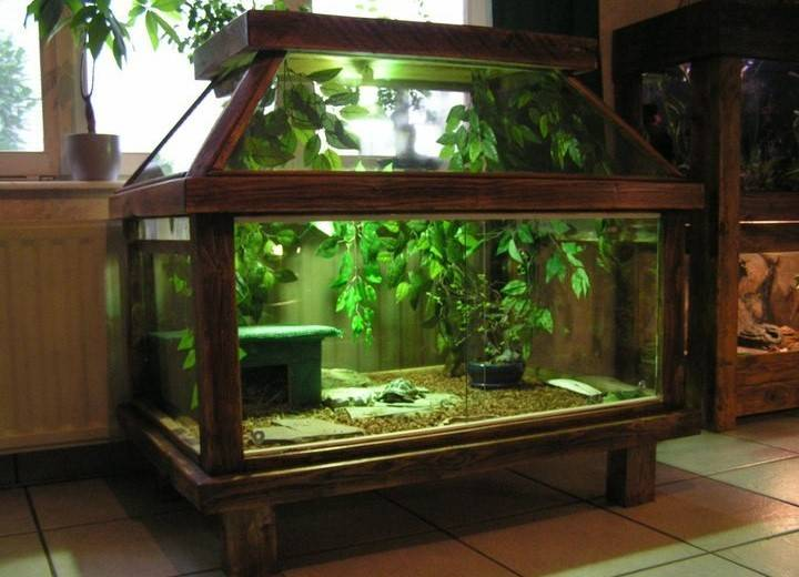 Как самостоятельно сделать аквариум для красноухой черепахи?