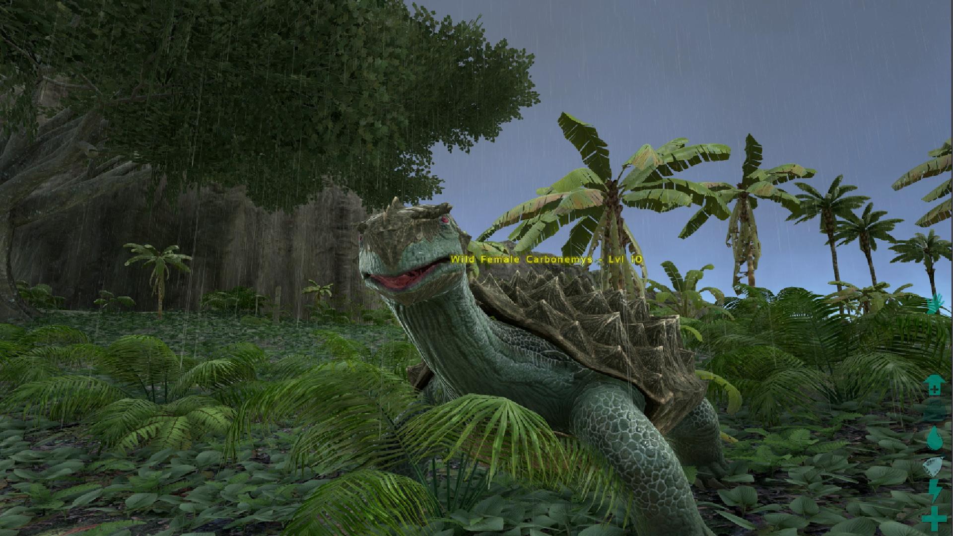 Kibble (carbonemys egg) - official ark: survival evolved wiki