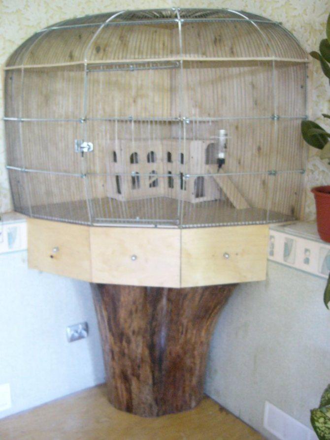 Как сделать домик для шиншиллы своими руками?